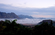 Histoire, nature et plages : Découvrez l\'Ouest de l\'île