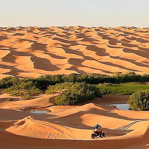 Aventure en quad dans le désert - Djerba -