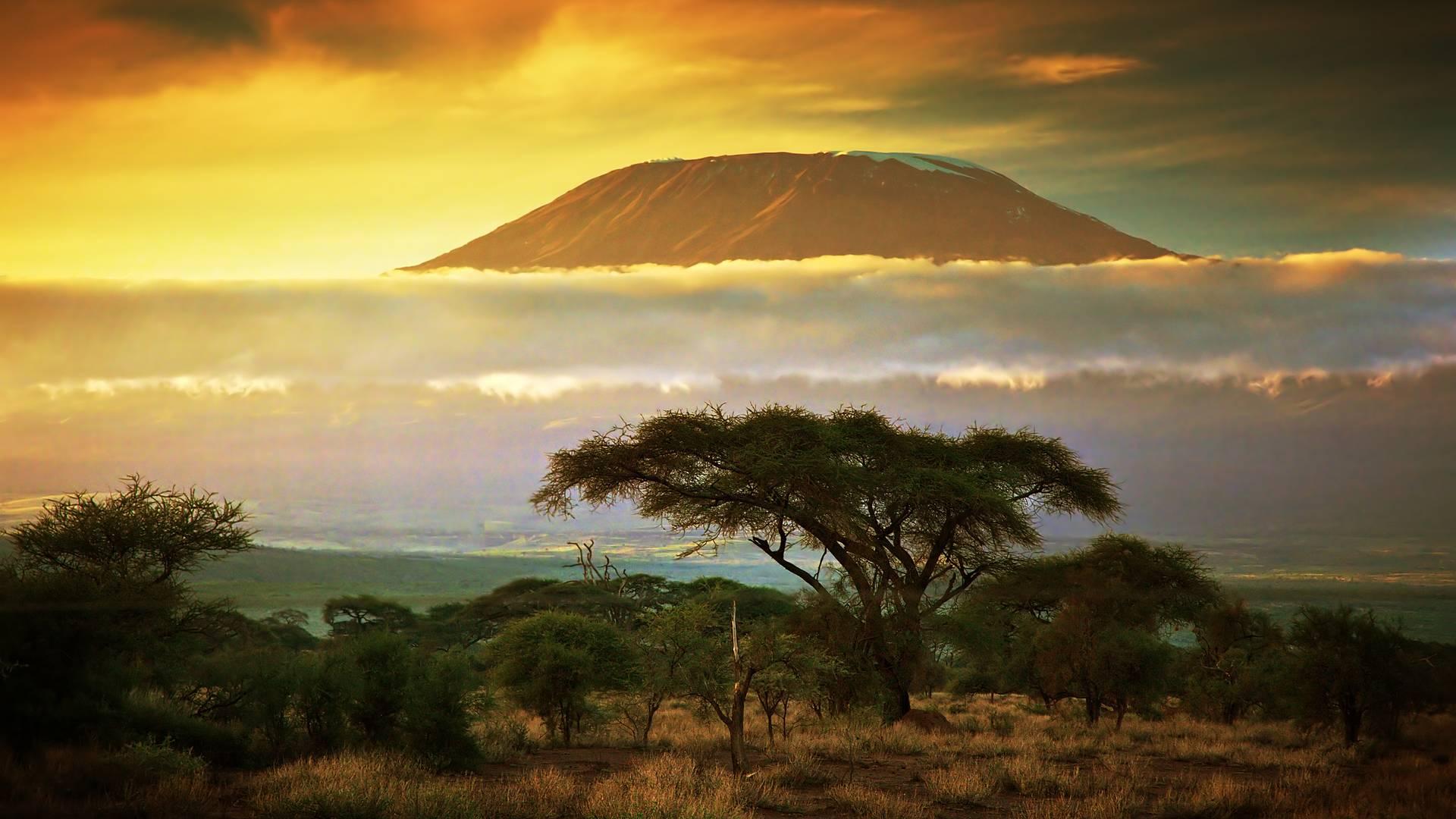 Del Monte Kilimanjaro a los Parques del Norte de Tanzania