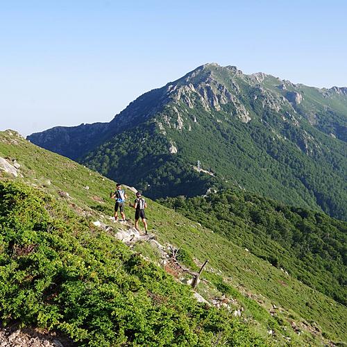 Corse secrète - avec les ânes et randonnée en famille en liberté - Corse - sur-mesure - circuit - evaneos