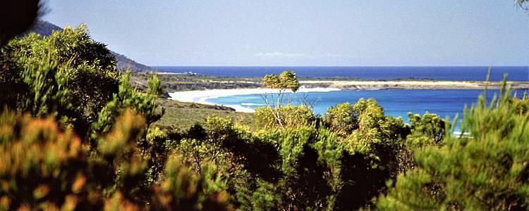 Les essentiels de la Tasmanie