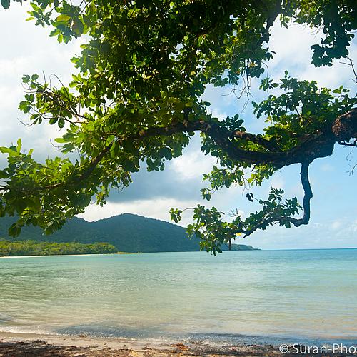 Côte Est: Mer de Corail et Forêt Tropicale -