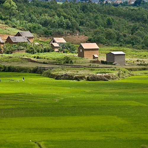 Des Hautes Terres au Grand Sud - Antananarivo -
