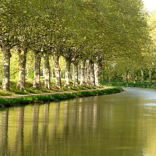 Le canal du Midi : de Toulouse à la mer - Toulouse -