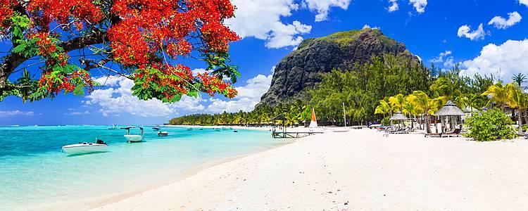 Dal mare al deserto, Mauritius e Dubai