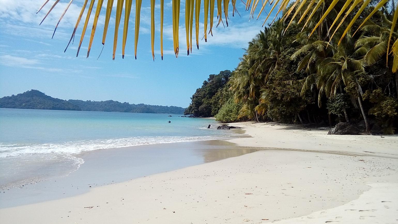 Image Perles du Pacifique en Autotour