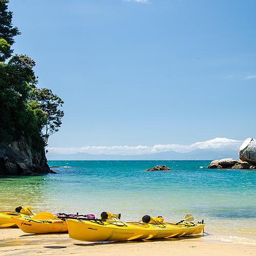 La face cachée du pays des kiwis - Auckland -