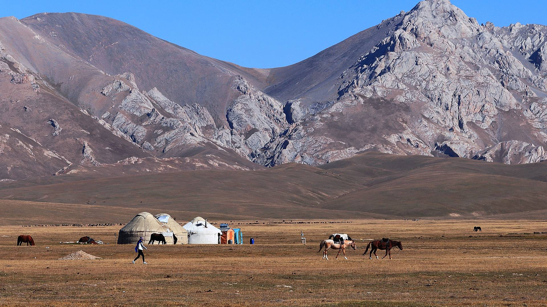 Au coeur du Kirghizistan en groupe