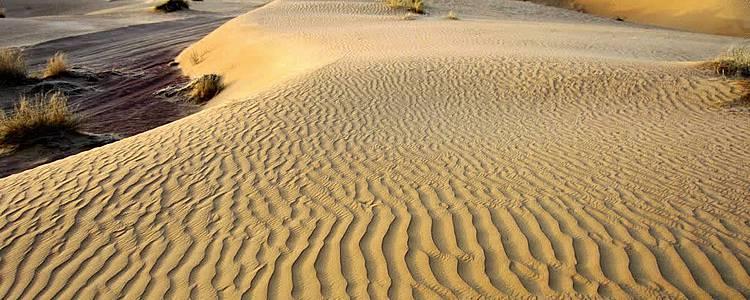 Vers le coeur du désert de karakoum en groupe