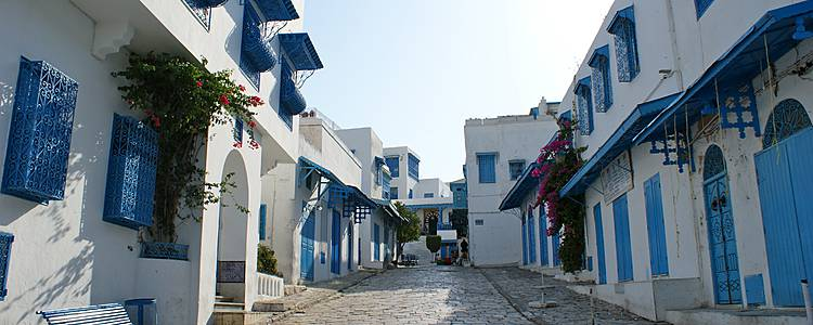 Alla scoperta dei tesori tunisini