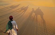 Voyage équitable, désert du Thar et rencontre avec les bishnoïs