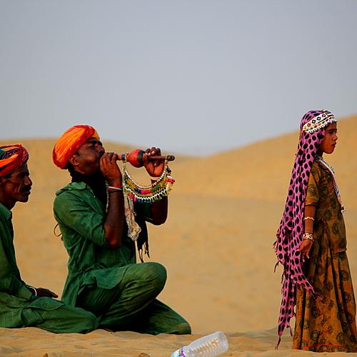 Taj Mahal, palais, tigres et dunes -