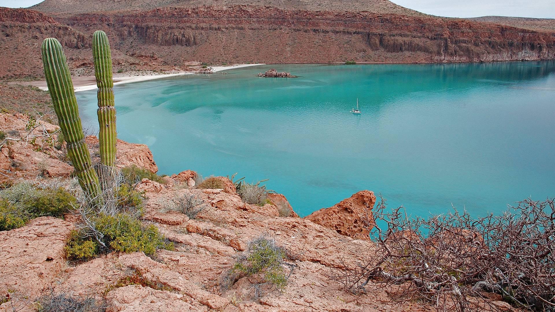 Discovery Baja California self-drive