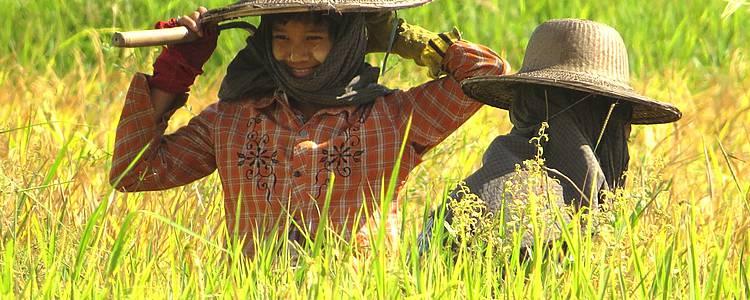 In Kontakt mit den Stämmen von Barma und Shan