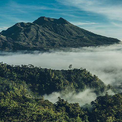 Découverte de Bali, entre nature, culture et splendeurs - Denpasar -