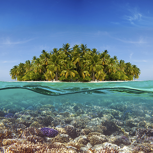 Vacances de rêve sans contraintes au Medhufushi - Malé -