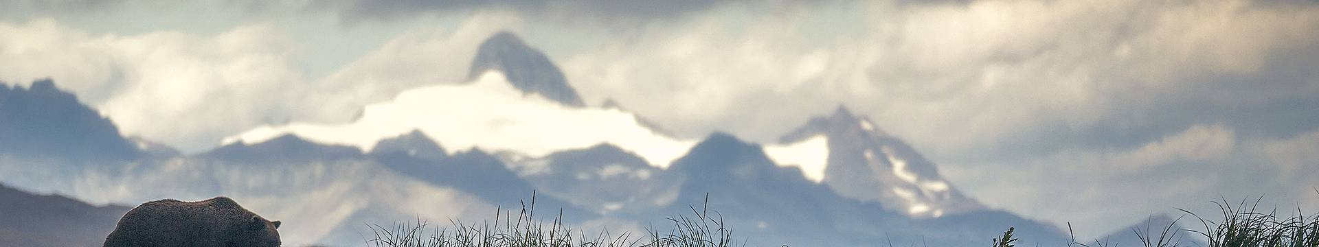 Individualreisen Alaska