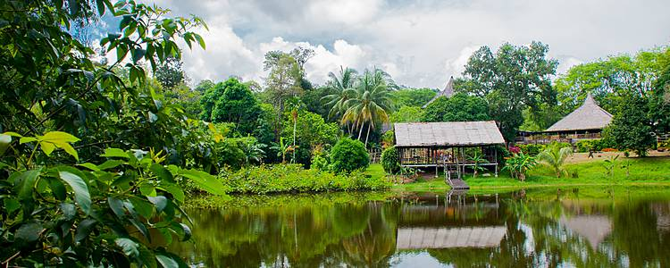 Penisola malese e insolito Sarawak e bellezze naturali del Sabah