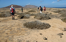 Lanzarote en Famille, Multi activités