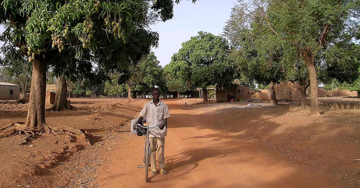 Voyage avec des animaux : Peuples Lobi et Gourounsi et Safari à Nazinga