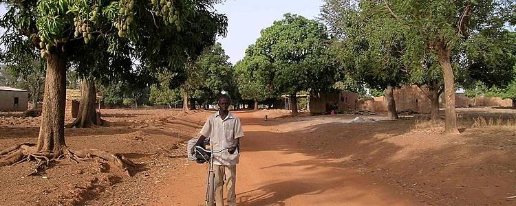 Peuples Lobi et Gourounsi et Safari à Nazinga