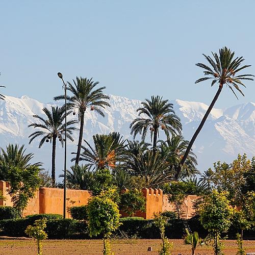 Au coeur des merveilles de l'Atlas à l'Atlantique - Marrakech -