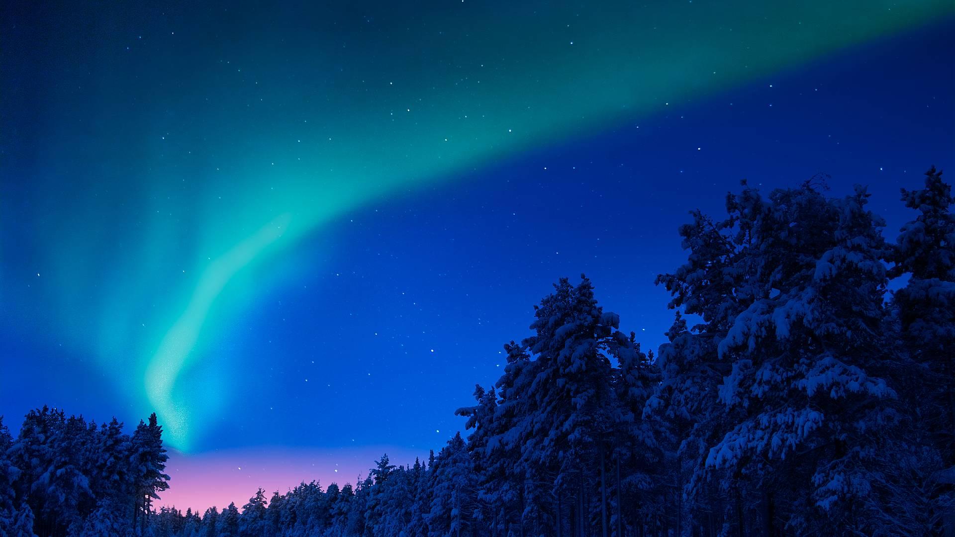 Aventure Boréale - La Laponie norvégienne à l'heure d'hiver