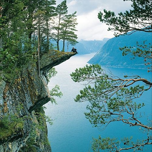 Tour des fjords -