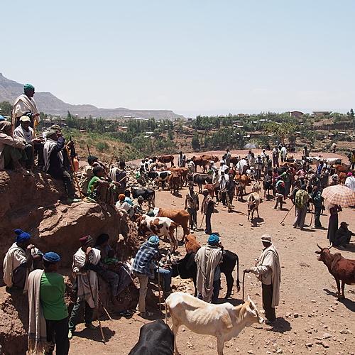 Le Grand tour - Addis-Abeba -