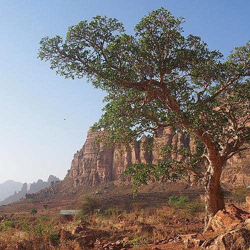 Culture et randonnée : cap sur le Nord - Addis-Abeba -