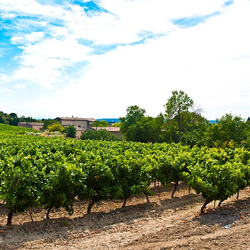 Petite escapade oenologique dans les Corbières - France (Languedoc Roussillon) - sur-mesure - circuit - evaneos