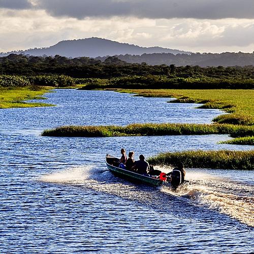 L'essentiel, nature et culture - Cayenne -