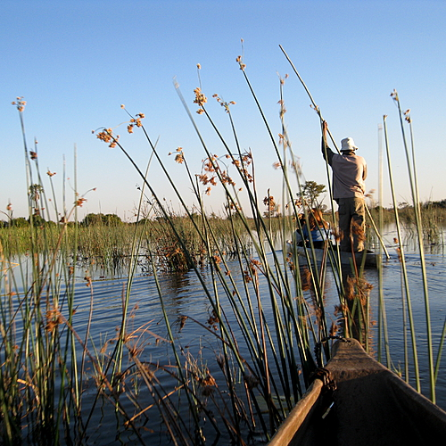Mille et un Botswana - Delta de l'Okavango - sur-mesure - circuit - evaneos