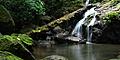 Osa Peninsula Waterfall