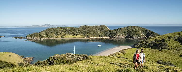 La costa dell'Isola del Nord in libertà