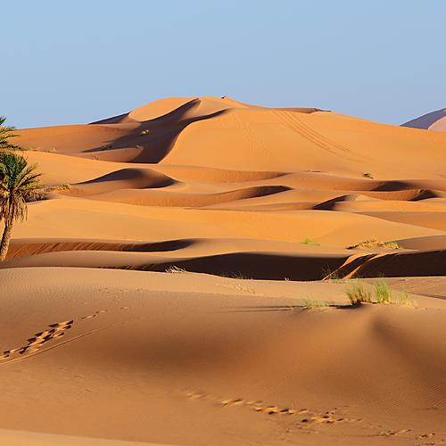 Escapade Saharienne - Marrakech -