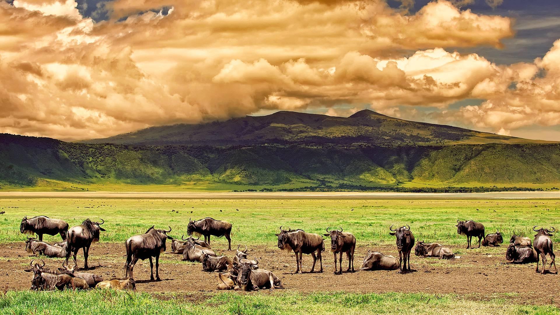 Von Tarangire nach Ngorongoro