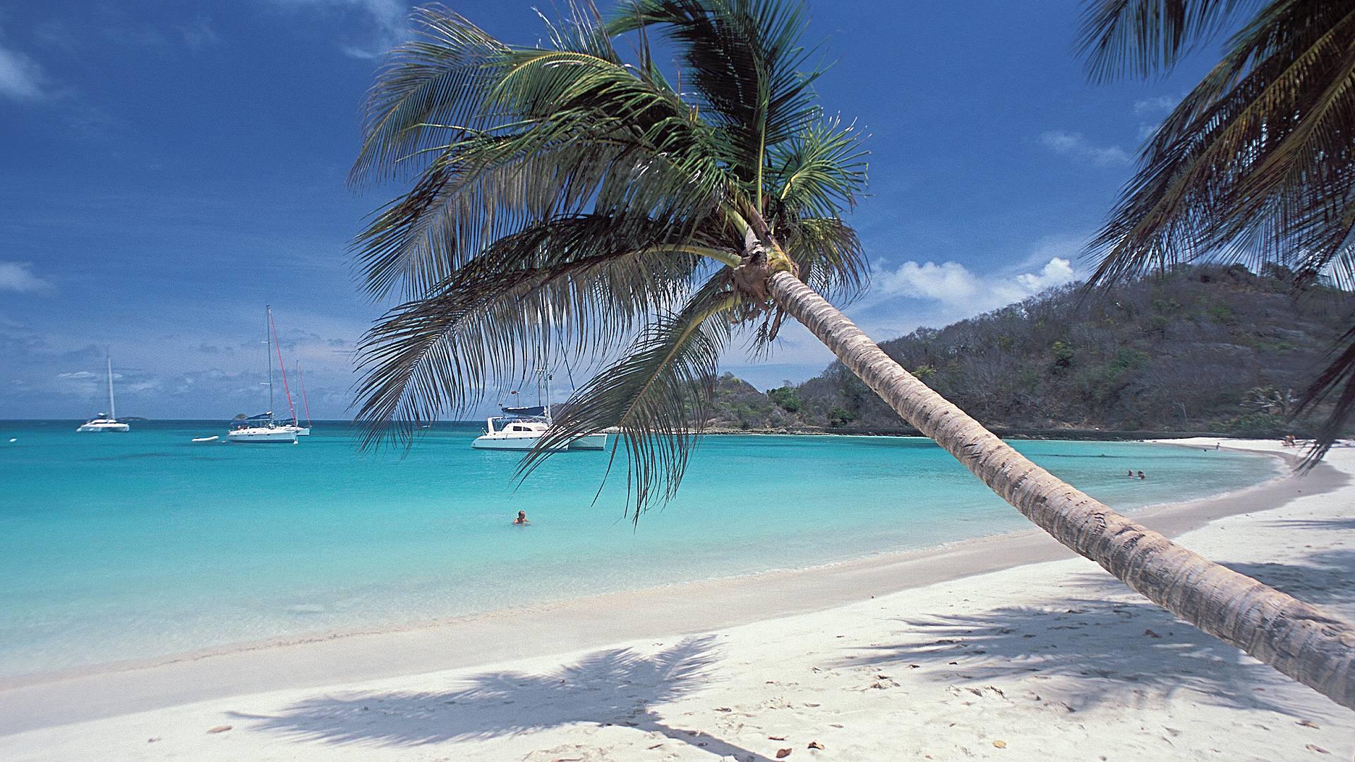 Combiné Martinique - Grenadine à Deux