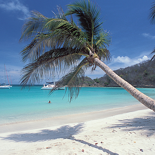 Combiné Martinique - Grenadine à Deux -