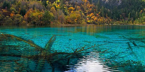 le lac turquoise de Jiuzhaigou @flickr cc ung ming whang