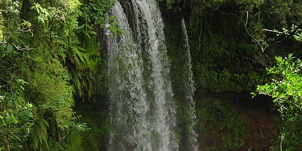 Une cascade dans le parc national de la Montagne d'Ambre @Hoffmann Simon
