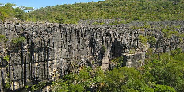 Los Tsingys del Parque Nacional de Ankarana @Hoffmann Simon