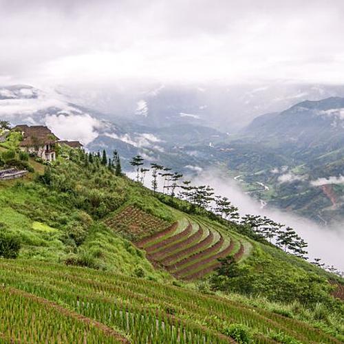 Randonnées dans le Nord Vietnam - Hanoï -