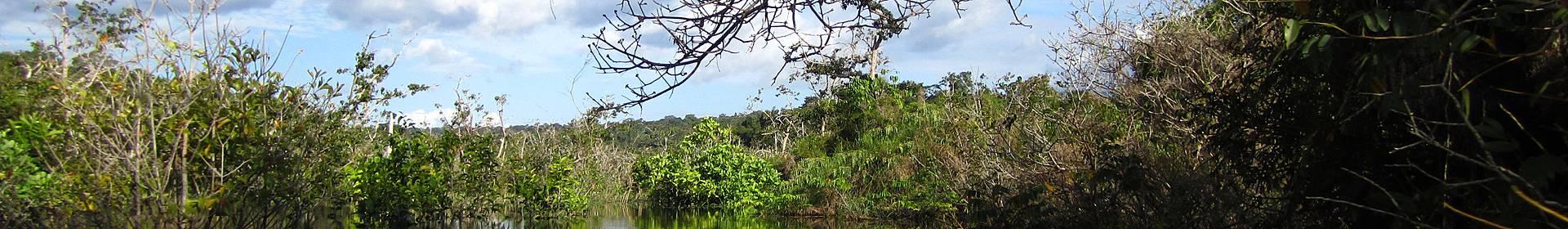 Reserva Florestal de Tapajos