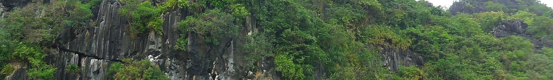 Isla de Cat Ba