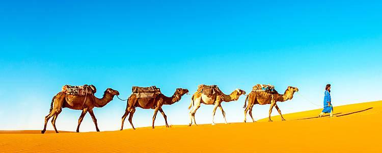 Land der Sultandynastien und Königreich der Nomaden