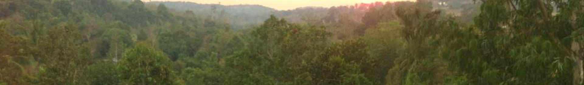 Province de Rotanah Kiri