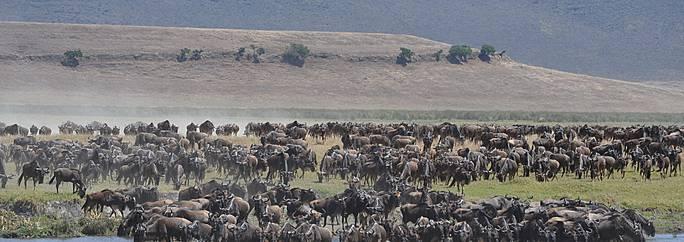 Tanzania visitare ngorongoro evaneos