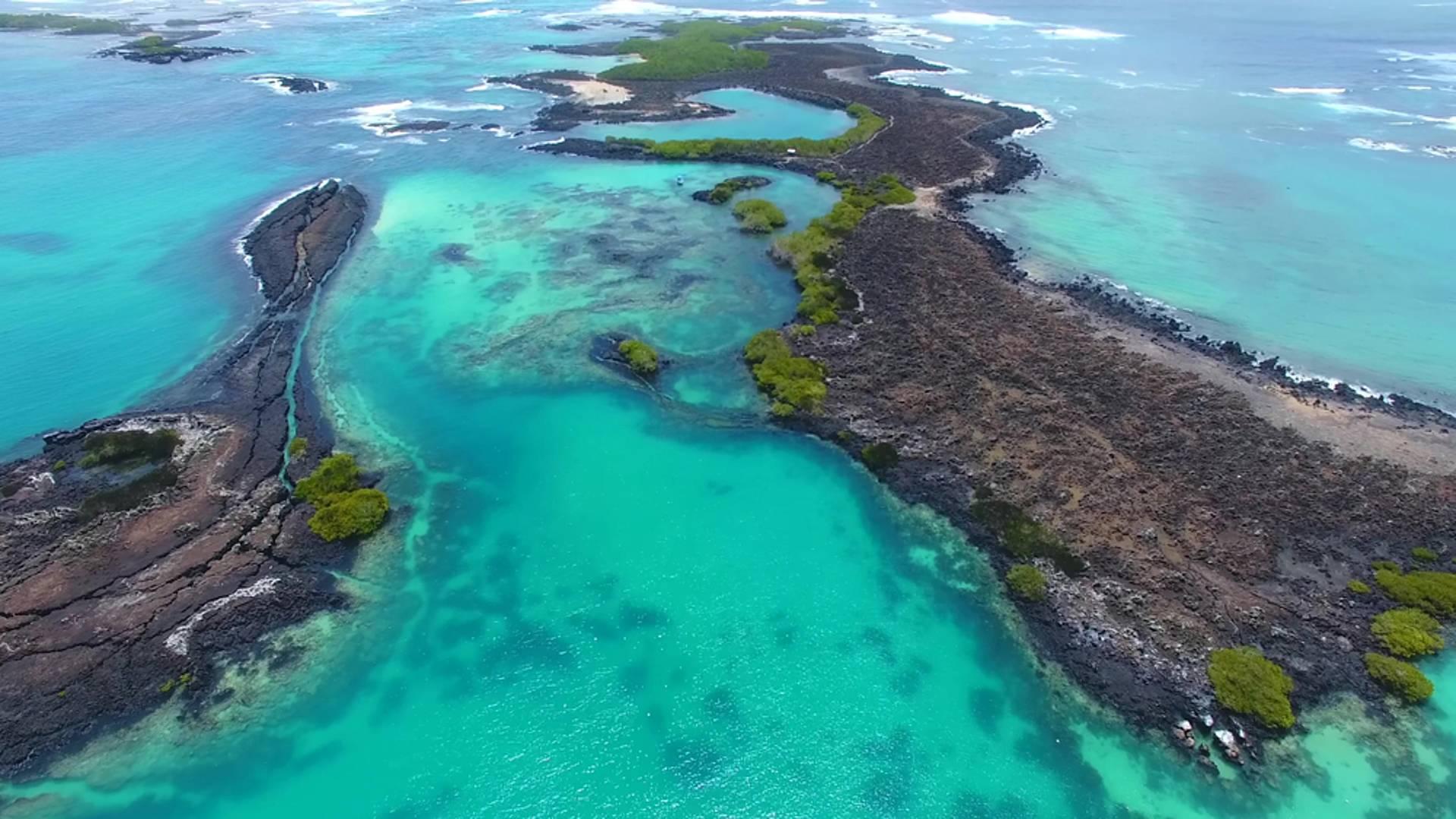 Flora y fauna en Galápagos