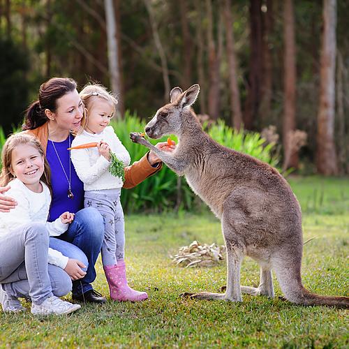 Roadtrip en famille! - Sydney -